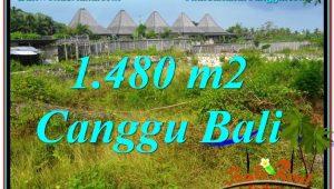 Affordable PROPERTY CANGGU 1,480 m2 LAND FOR SALE TJCG212