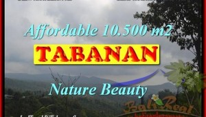 FOR SALE Affordable 10,500 m2 LAND IN TABANAN TJTB165