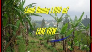 Beautiful 1.000 m2 LAND FOR SALE IN TABANAN BALI TJTB181