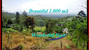 FOR SALE Magnificent PROPERTY 1,600 m2 LAND IN TABANAN BALI TJTB194