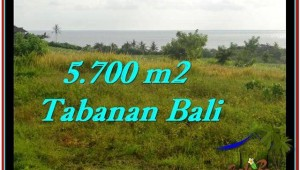 Exotic LAND SALE IN Tabanan Selemadeg BALI TJTB250