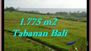 FOR SALE Magnificent LAND IN Tabanan Selemadeg BALI TJTB251
