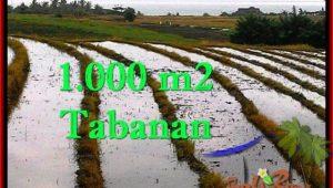 Exotic 1,000 m2 LAND FOR SALE IN TABANAN BALI TJTB261