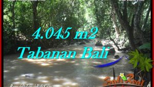 TABANAN 4,045 m2 LAND FOR SALE TJTB277