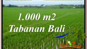 Exotic PROPERTY LAND SALE IN Tabanan Kerambitan TJTB307