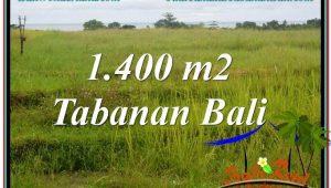 Affordable Tabanan Selemadeg LAND FOR SALE TJTB309