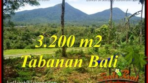Tabanan Penebel LAND FOR SALE TJTB319