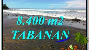 Exotic 8,400 m2 LAND IN TABANAN BALI FOR SALE TJTB326