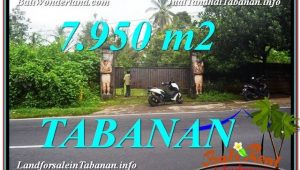 Magnificent TABANAN BALI 7,950 m2 LAND FOR SALE TJTB331