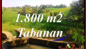 Exotic LAND FOR SALE IN TABANAN TJTB338