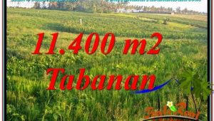 Magnificent 11,400 m2 LAND FOR SALE IN TABANAN TJTB339