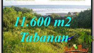 Magnificent PROPERTY TABANAN BALI LAND FOR SALE TJTB340