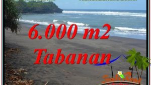 Beautiful PROPERTY LAND SALE IN TABANAN BALI TJTB345