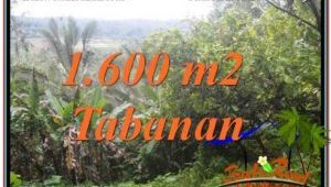 Magnificent LAND IN TABANAN FOR SALE TJTB348