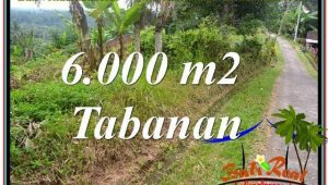 Beautiful 6,000 m2 LAND IN TABANAN FOR SALE TJTB349