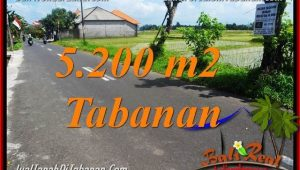 Exotic PROPERTY 5,200 m2 LAND FOR SALE IN Tabanan Kediri TJTB351