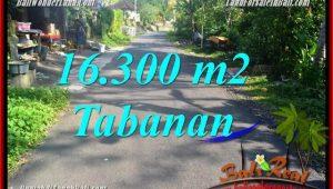Tabanan Selemadeg Barat BALI LAND FOR SALE TJTB361