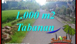 Magnificent PROPERTY LAND FOR SALE IN TABANAN BALI TJTB363