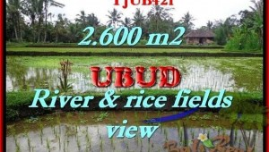 Affordable LAND FOR SALE IN Ubud Tegalalang BALI TJUB421