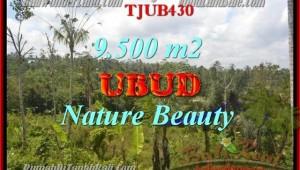 Beautiful PROPERTY 9,500 m2 LAND SALE IN UBUD BALI TJUB430