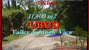 LAND SALE IN Ubud Payangan TJUB431