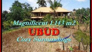 Magnificent PROPERTY LAND FOR SALE IN Sentral Ubud TJUB460