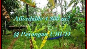 Exotic Ubud Payangan BALI LAND FOR SALE TJUB486