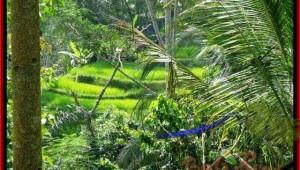 Exotic Ubud Tegalalang BALI LAND FOR SALE TJUB495