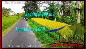 FOR SALE Beautiful LAND IN Ubud Tegalalang BALI TJUB497
