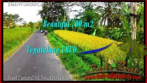 FOR SALE Beautiful LAND IN Ubud Tegalalang BALI TJUB497