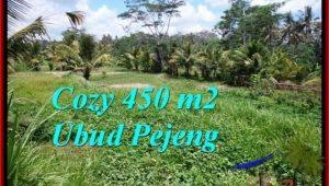 Beautiful 450 m2 LAND SALE IN UBUD BALI TJUB535