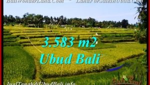 FOR SALE LAND IN Ubud Pejeng BALI TJUB542