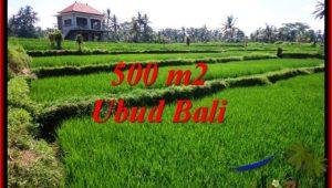 FOR SALE Beautiful PROPERTY LAND IN UBUD TJUB543