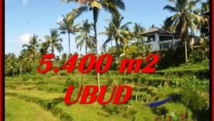 Affordable PROPERTY 5,400 m2 LAND FOR SALE IN Ubud Tegalalang TJUB550