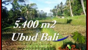 Exotic PROPERTY LAND IN UBUD FOR SALE TJUB554