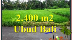 Magnificent PROPERTY LAND SALE IN UBUD TJUB563