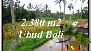 Exotic UBUD BALI 2,380 m2 LAND FOR SALE TJUB567