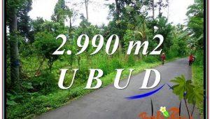 Beautiful LAND IN UBUD FOR SALE TJUB591