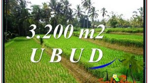 FOR SALE Beautiful LAND IN Ubud Tegalalang BALI TJUB594