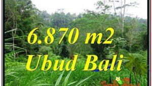 FOR SALE Exotic PROPERTY LAND IN Ubud Tampak Siring BALI TJUB602