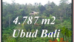 Ubud Tampak Siring BALI LAND FOR SALE TJUB603