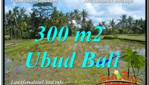 300 m2 LAND FOR SALE IN UBUD BALI TJUB619