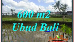 Affordable 600 m2 LAND IN UBUD BALI FOR SALE TJUB621
