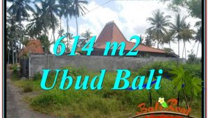 Exotic Sentral Ubud BALI LAND FOR SALE TJUB622