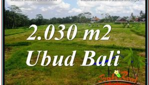 Exotic UBUD BALI 2,030 m2 LAND FOR SALE TJUB623
