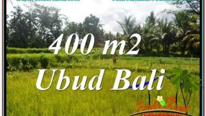 FOR SALE Beautiful 400 m2 LAND IN UBUD BALI TJUB627
