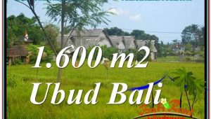 Magnificent PROPERTY Sentral / Ubud Center 1,600 m2 LAND FOR SALE TJUB633