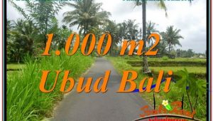 FOR SALE Magnificent PROPERTY 1,000 m2 LAND IN UBUD BALI TJUB634