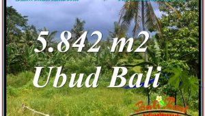 LAND FOR SALE IN Sentral / Ubud Center BALI TJUB638