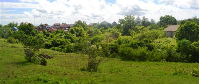 Land for sale in Jimbaran Bali 50 Ares in Jimbaran